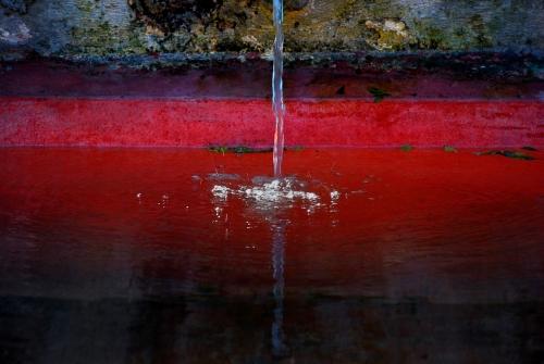 Tras el Cristal I |Fotografía de Ana Sanz Llorens | Compra arte en Flecha.es