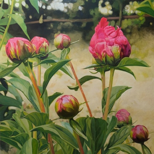 Peonías abriéndose |Pintura de Carmen Varela | Compra arte en Flecha.es