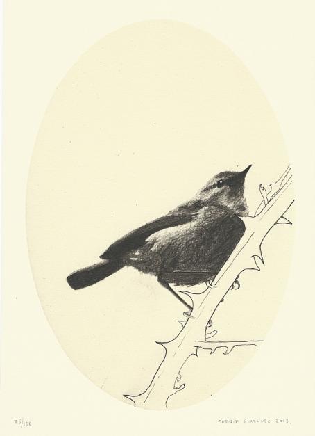 Pájaro sobre zarza |Obra gráfica de Enrique González (TDP) | Compra arte en Flecha.es