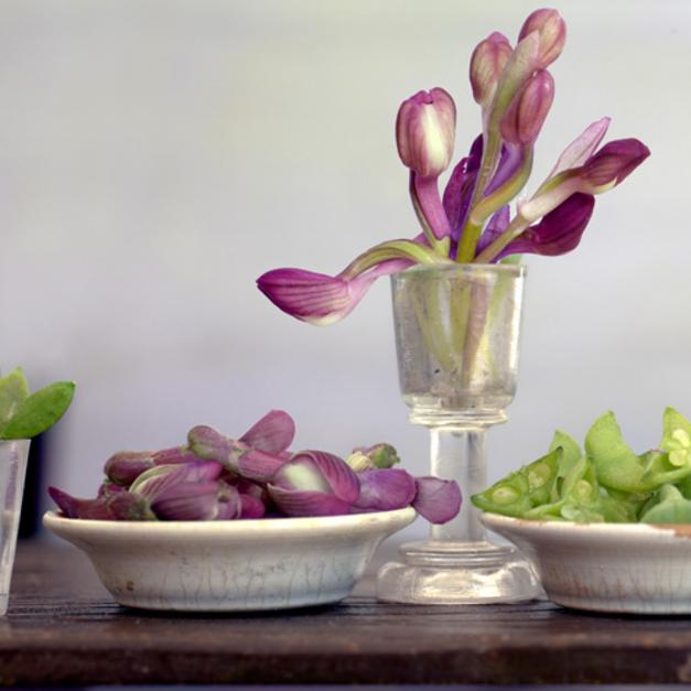 Orquídeas |Fotografía de Leticia Felgueroso | Compra arte en Flecha.es