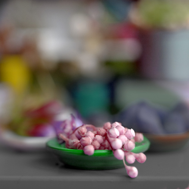 plato verde |Fotografía de Leticia Felgueroso | Compra arte en Flecha.es