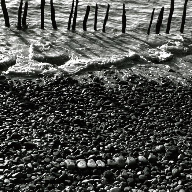 Guadalquivir ( paciencia) |Fotografía de Encarna Marín | Compra arte en Flecha.es