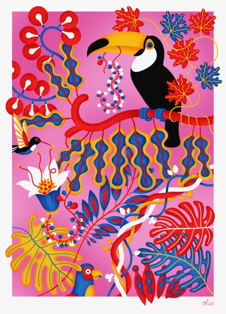 Toucan  Dibujo de Otis   Compra arte en Flecha.es
