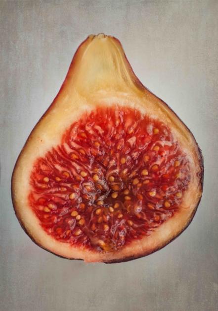 Sexy fig |Fotografía de Eva Ortiz | Compra arte en Flecha.es