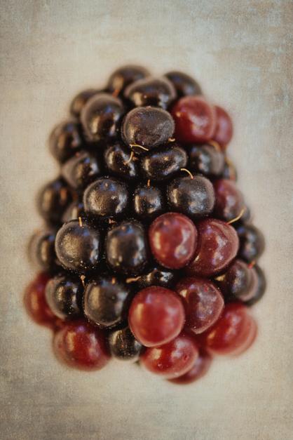 Fat blackberry |Fotografía de Eva Ortiz | Compra arte en Flecha.es