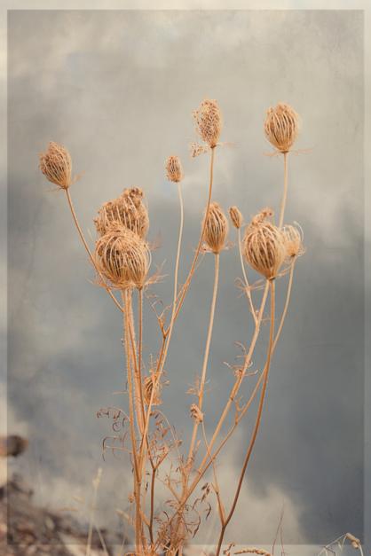 Sobre las nubes |Fotografía de Eva Ortiz | Compra arte en Flecha.es