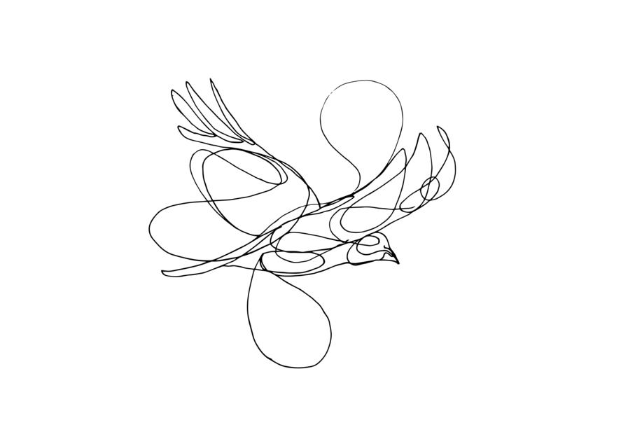 Pájaros V |Dibujo de Taquen | Compra arte en Flecha.es