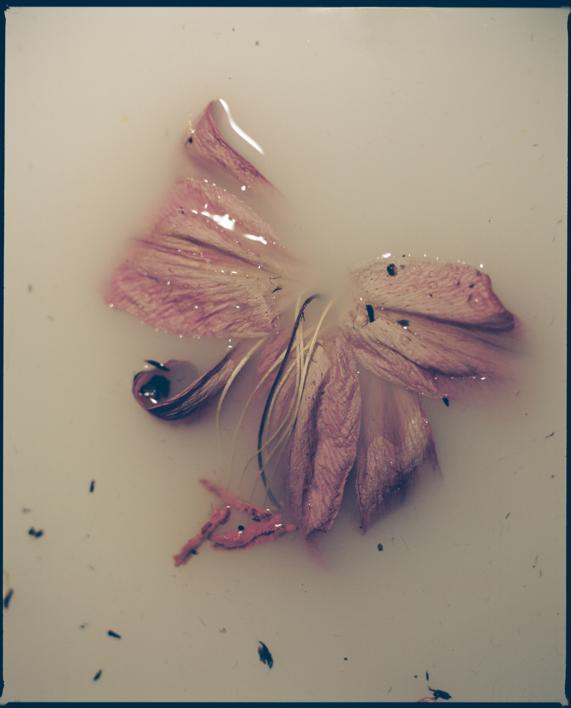 ENTIERRO |Fotografía de Ana Sting | Compra arte en Flecha.es