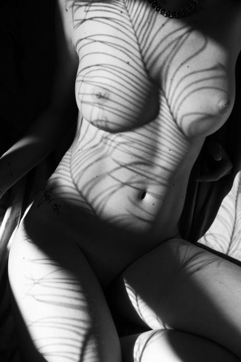 Anatomía natural, salvaje #4  Fotografía de Emilio Jiménez   Compra arte en Flecha.es