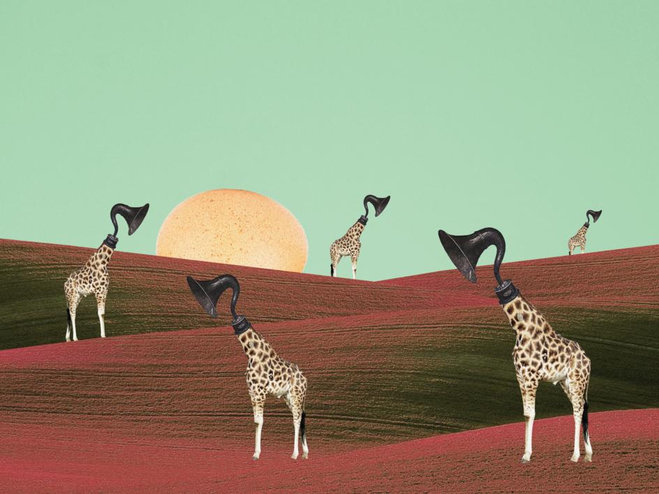 Sonatta Giraffe |Collage de Jaume Serra Cantallops | Compra arte en Flecha.es
