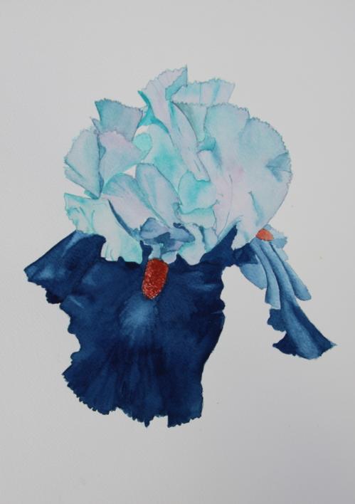Lirio Azul Larteral |Pintura de Miguel Ortega Mesa | Compra arte en Flecha.es