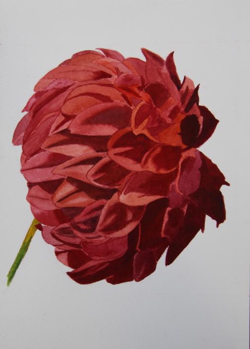 Crisantemo Rojo |Pintura de Miguel Ortega Mesa | Compra arte en Flecha.es
