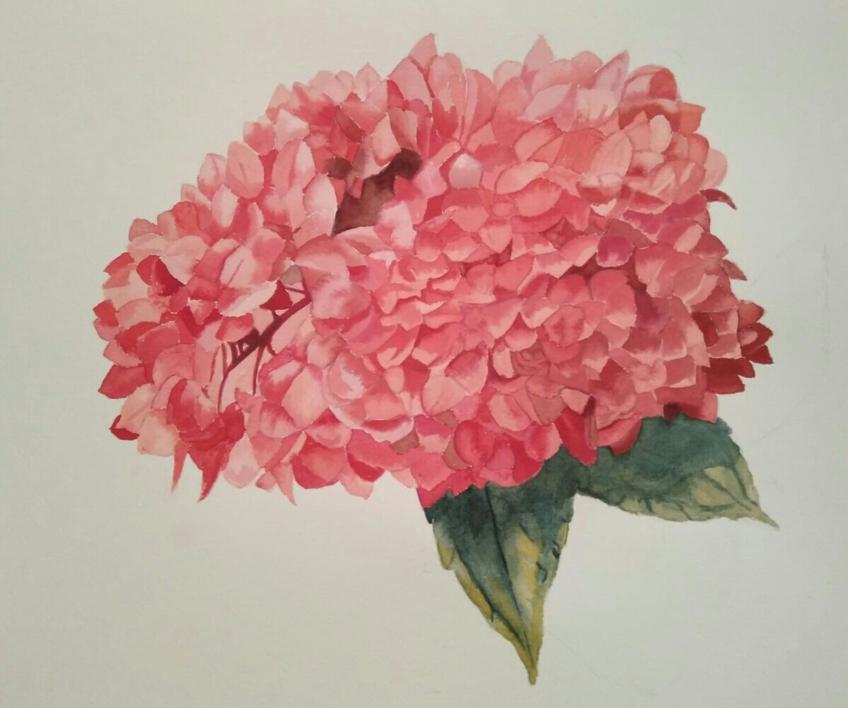 Hortensia |Pintura de Miguel Ortega Mesa | Compra arte en Flecha.es