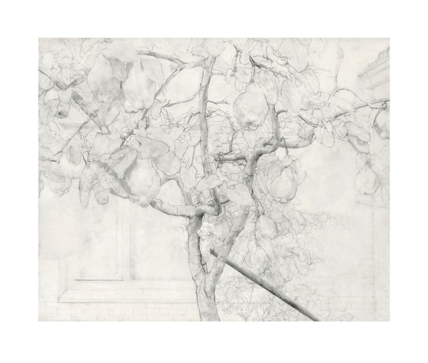 Membrillero |Obra gráfica de Antonio López | Compra arte en Flecha.es