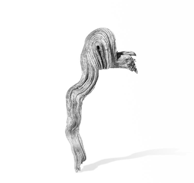 Objet Trouve |Digital de jjuncadella | Compra arte en Flecha.es