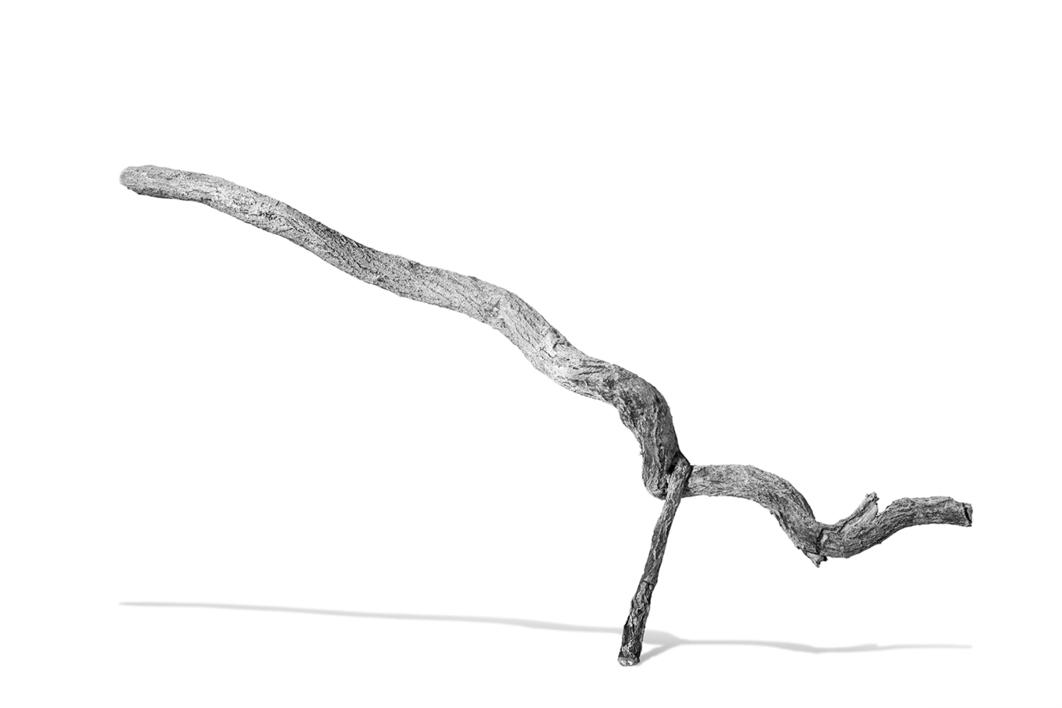 Objet Trouve  (Las Texturas del Mundo) |Digital de jjuncadella | Compra arte en Flecha.es