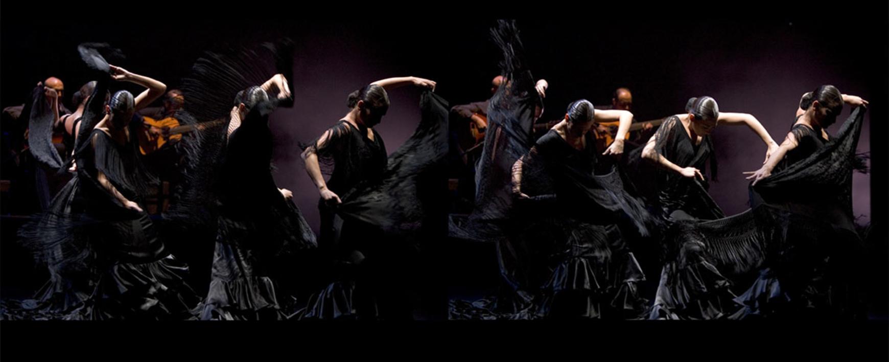 Cuerpo de baile |Fotografía de Peter Müller Peter | Compra arte en Flecha.es