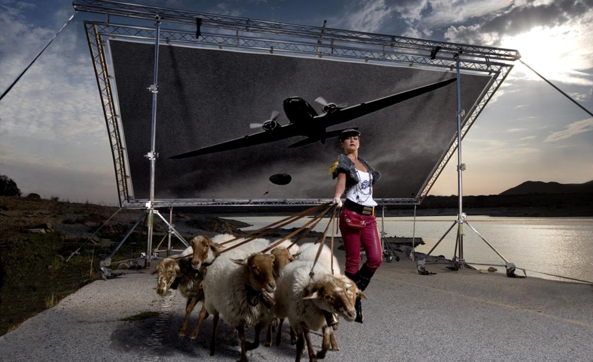 Ejército de ovejas y carneros |Fotografía de Peter Müller Peter | Compra arte en Flecha.es