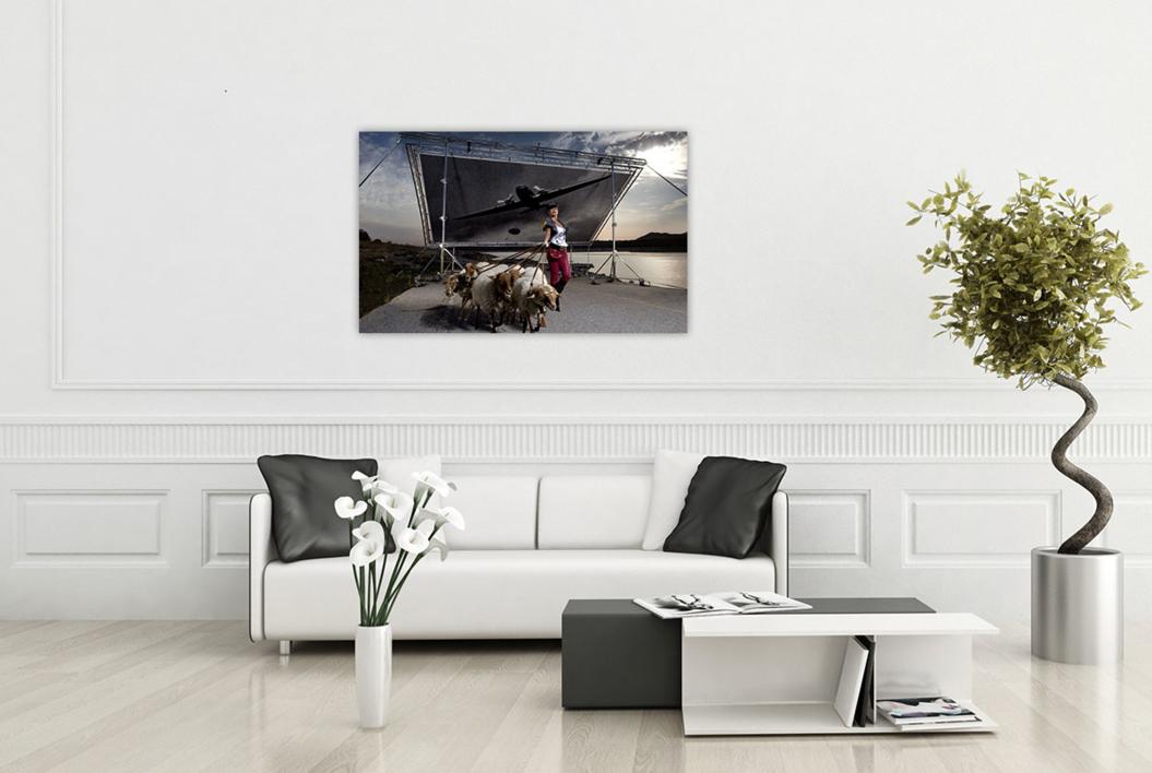 Ejército de ovejas y carneros | Fotografía de Peter Müller Peter | Compra arte en Flecha.es