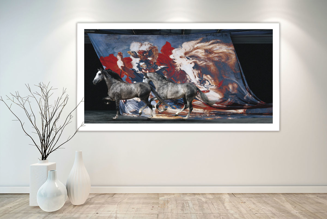 Lucha de San Jorge con el dragón | Fotografía de Peter Müller Peter | Compra arte en Flecha.es