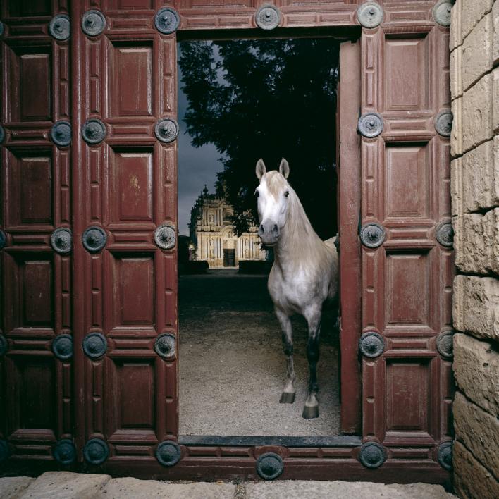 Entrada del Monasterio de la Cartuja |Fotografía de Peter Müller Peter | Compra arte en Flecha.es