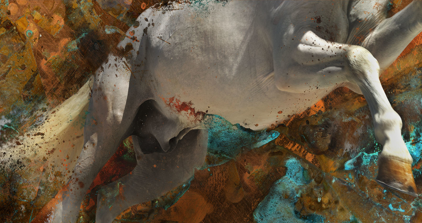 OXY V |Fotografía de Peter Müller Peter | Compra arte en Flecha.es