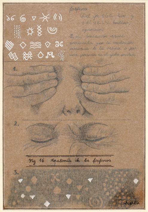 Anatomía de los fosfenos |Collage de Sara González | Compra arte en Flecha.es