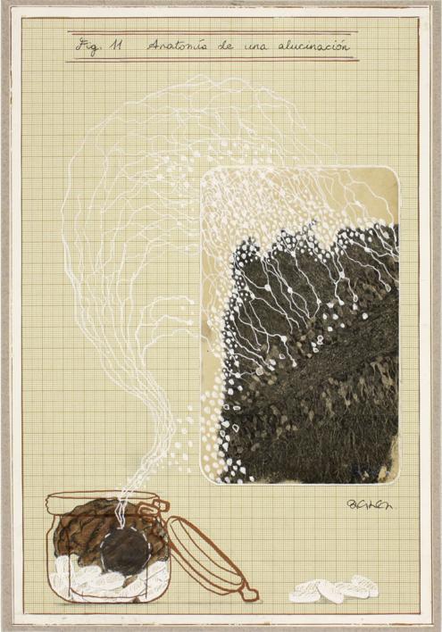 Anatomía de una alucinación |Collage de Sara González | Compra arte en Flecha.es