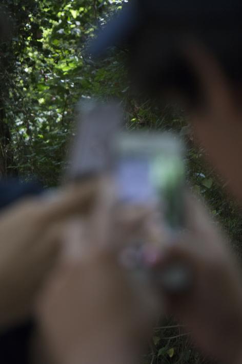 Mobile Phone Nature  Digital de Natalia Garcia   Compra arte en Flecha.es