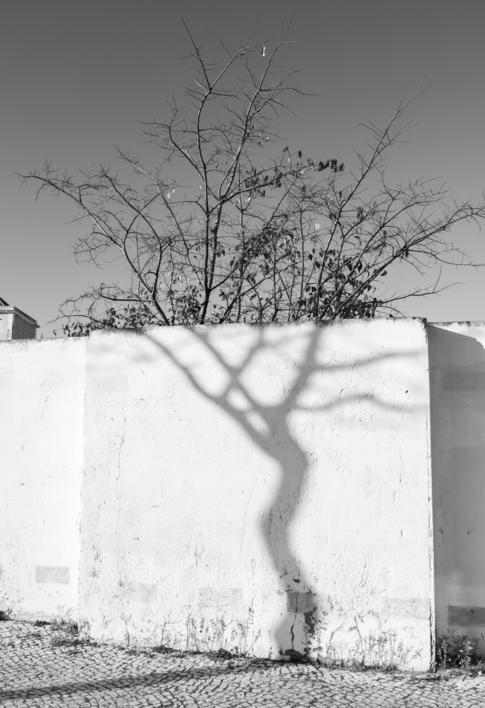 Pintando con sombras |Fotografía de Alvaro Sampedro | Compra arte en Flecha.es