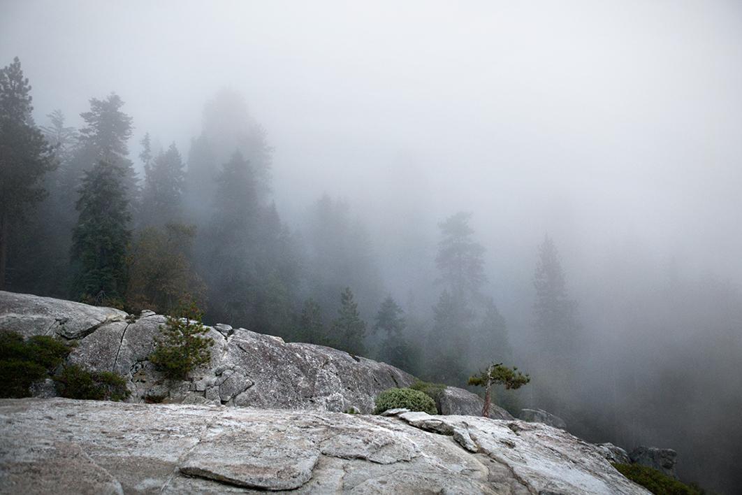 American wilderness  Fotografía de Naaroo   Compra arte en Flecha.es