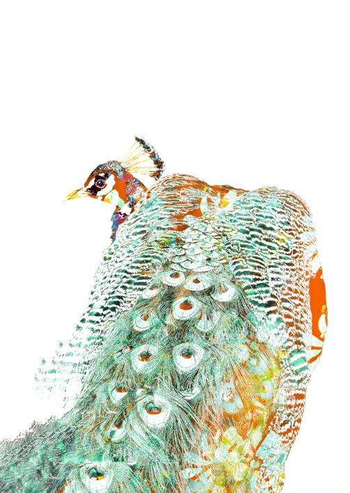 Iridiscencia 4 |Digital de Marta Caldas | Compra arte en Flecha.es