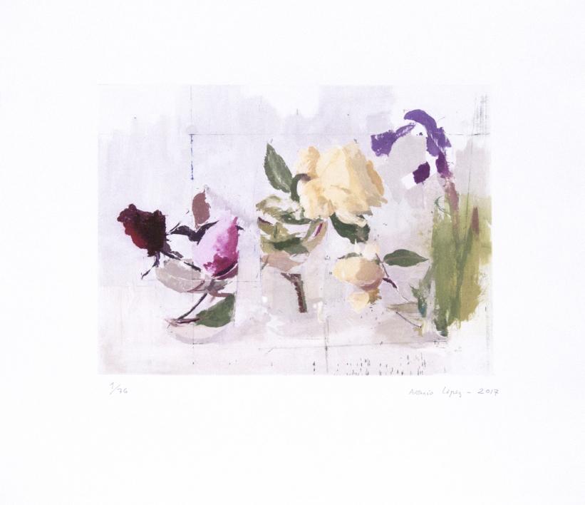 Rosas de Año Nuevo |Obra gráfica de Antonio López | Compra arte en Flecha.es