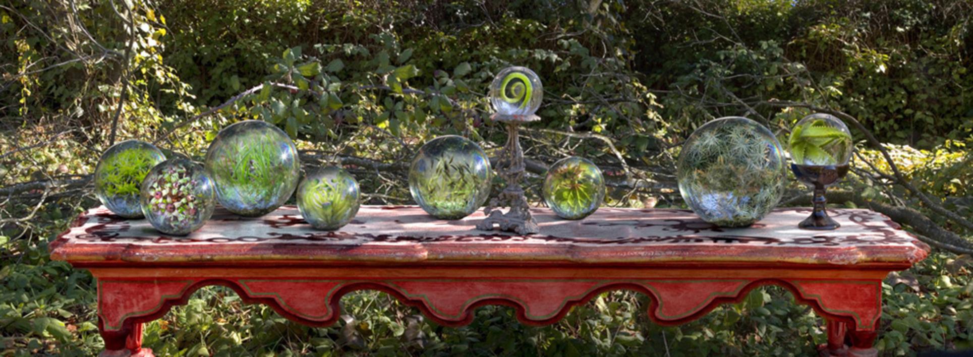 Jardín |Fotografía de Leticia Felgueroso | Compra arte en Flecha.es
