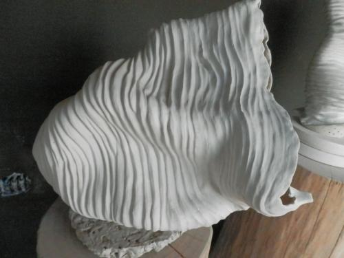 Coral Tumbado  Escultura de Carmen Vila   Compra arte en Flecha.es