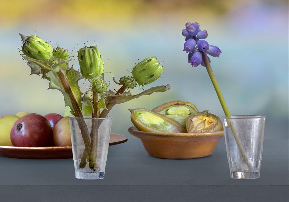 Bodegón mesa azul |Fotografía de Leticia Felgueroso | Compra arte en Flecha.es