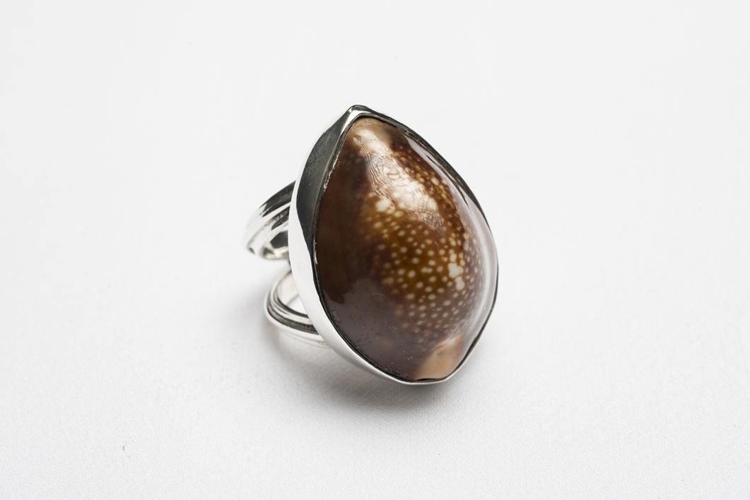 Anillo de plata 950 y caracol marrón | Joyería de Ester Ventura | Compra arte en Flecha.es
