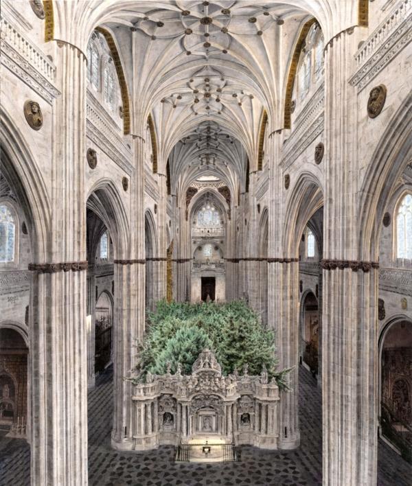 Crece el Interior |Fotografía de Carlos Arriaga | Compra arte en Flecha.es