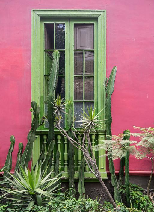 Window,  Lima |Fotografía de Andy Sotiriou | Compra arte en Flecha.es