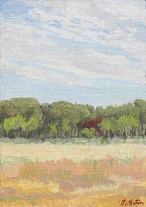 Pinar  Pintura de Ignacio Mateos   Compra arte en Flecha.es