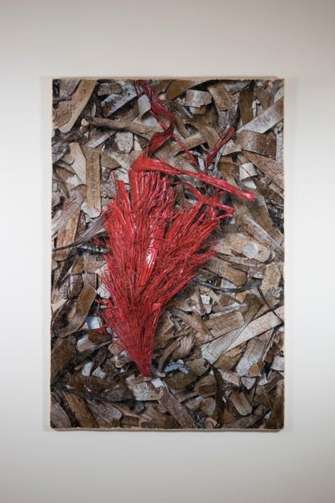 Algues 01 |Digital de Salvador Llinàs | Compra arte en Flecha.es