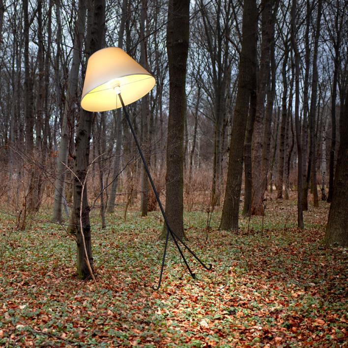 Lámpara |Fotografía de Leticia Felgueroso | Compra arte en Flecha.es