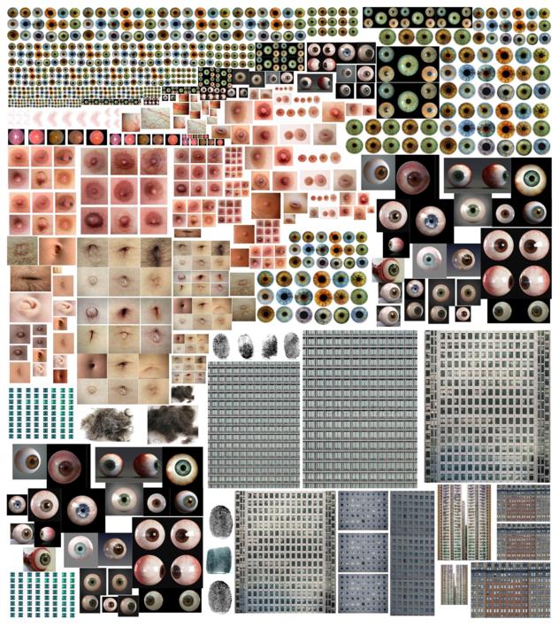 TRIPOFÓBICA |Collage de Arpa y Rizo | Compra arte en Flecha.es