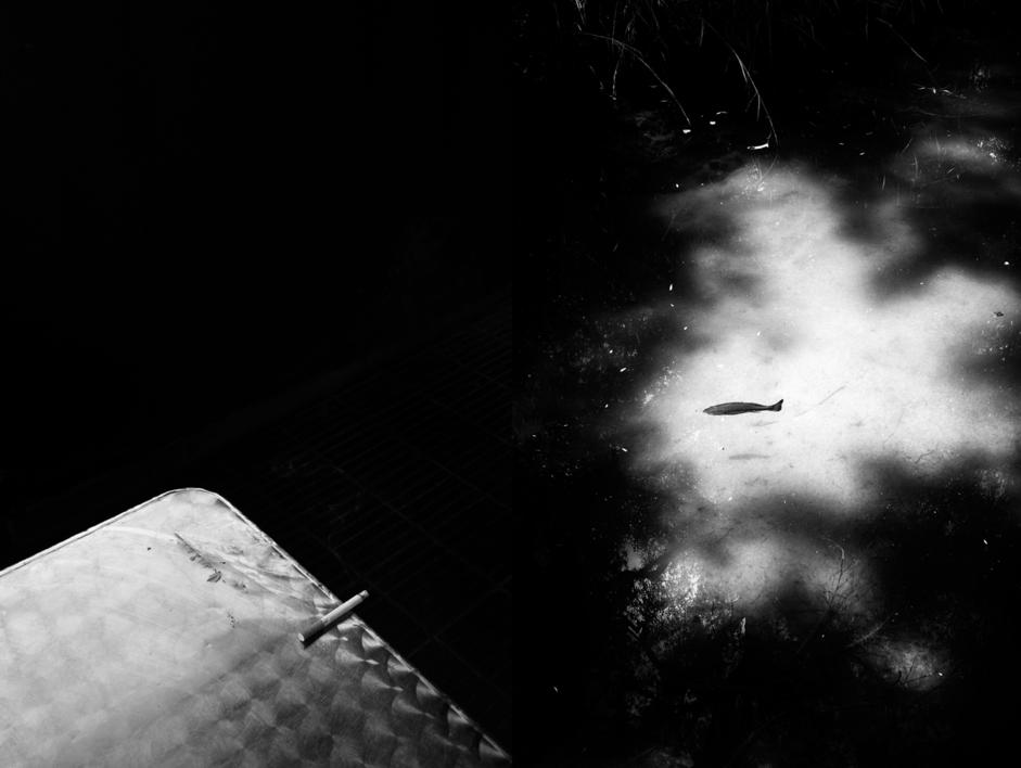 Mas 28  Fotografía de David Salcedo   Compra arte en Flecha.es