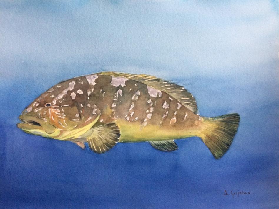 De la mar..... |Dibujo de Chela Grijelmo | Compra arte en Flecha.es