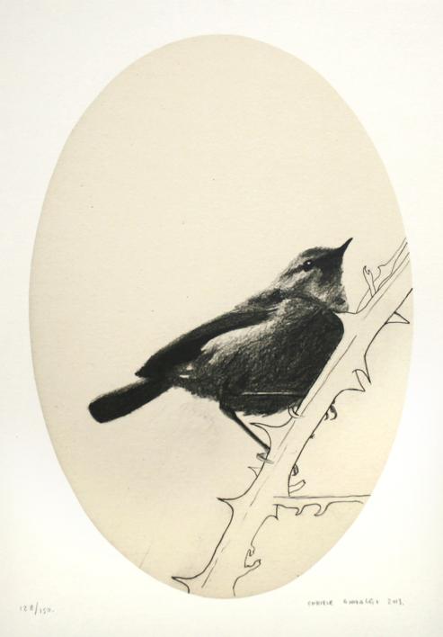 Gorrión ovalado |Dibujo de Enrique González | Compra arte en Flecha.es