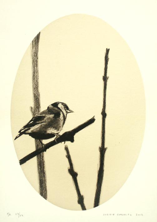 Jilguero entre ramas |Dibujo de Enrique González | Compra arte en Flecha.es