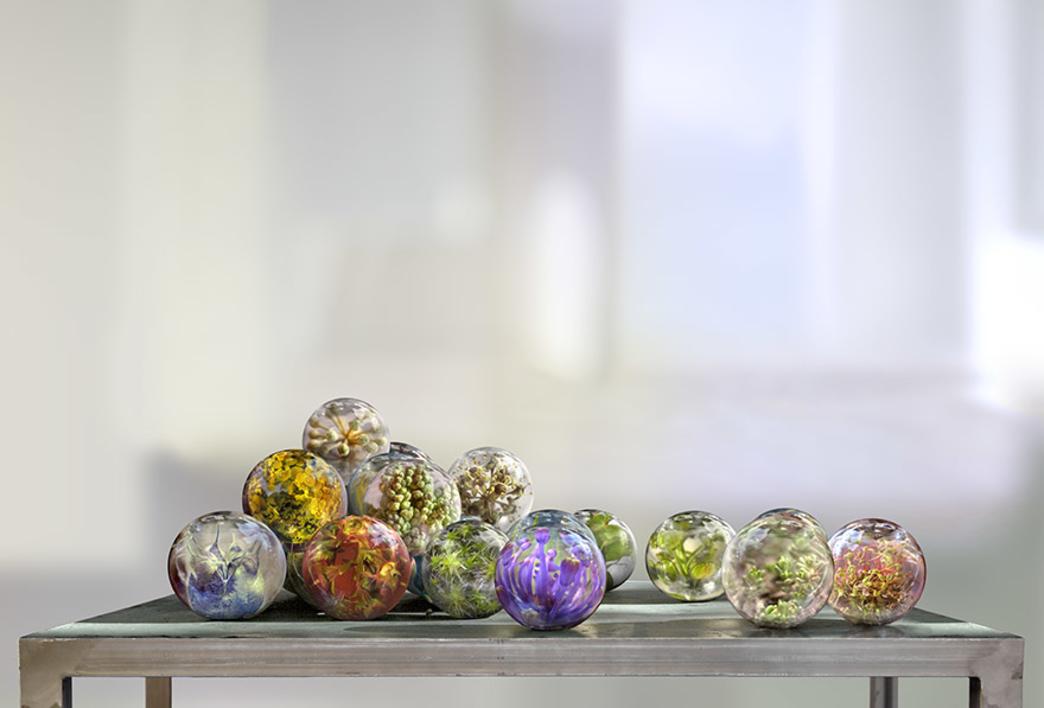 Esferas con plantas |Fotografía de Leticia Felgueroso | Compra arte en Flecha.es