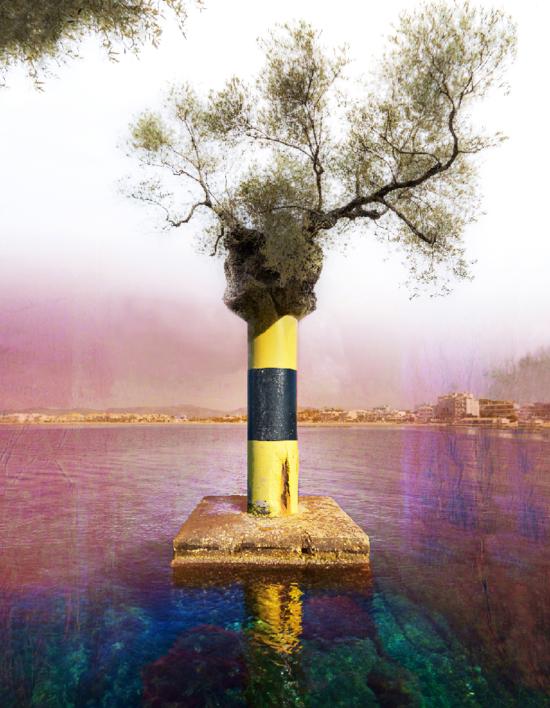 Naturaleza guía  Digital de Xisco Fuster   Compra arte en Flecha.es