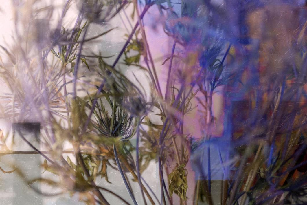 Todos los mundos |Digital de Xisco Fuster | Compra arte en Flecha.es